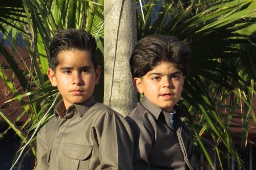 Deze jongetjes hebben een mooie plek met overzicht gevonden.